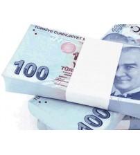 Şaka Parası - 100 Adet 100 TL