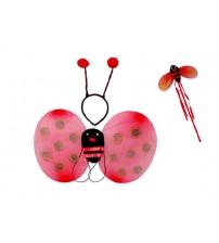 Uğur Böceği Kanat Seti 3 Parça