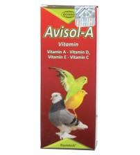 Muhabbet Kuşu A Vitamini - Avisol A